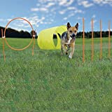Agility Kit for Dogs - Kyjen Outward Hound 9 Piece Outdoor Agility Starter Set - Quality Agility Equipment for Dogs and Puppies