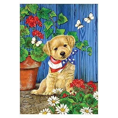 Toland Home Garden Patriotic Puppy Flag