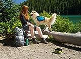 Ruffwear 50101-430S1 Hunderucksack, XS, pacific blau -