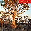 Audubon Trees of the World 2013 (Wall Calendar)
