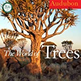 AUDUBON THE WORLD OF TREES CALENDAR 2013