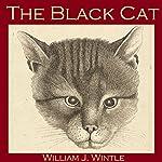 The Black Cat   William James Wintle