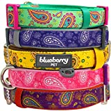 """Blueberry Pet Soft & Comfortable Paisley Flower Print Inspired Ultimate Emerald Green Adjustable Neoprene Padded Dog Collar, Neck 12""""-16"""", Small, Holiday Collars for Dogs"""