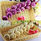 "E'Plaza 2pcs 20"" Artificial Vegetables Garlic Strings Bulbs Faux Vegetables Fruits Fake Food for Display House Kitchen Party Office Decor Garland Decoration (purple & creamy)"