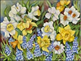 Daffodils and Grape Hyacinths by Joanne Porter Tile Mural for Kitchen Backsplash Bathroom Wall Tile Mural