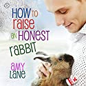 How to Raise an Honest Rabbit: Granby Knitting Series (       UNABRIDGED) by Amy Lane Narrated by Philip Alces