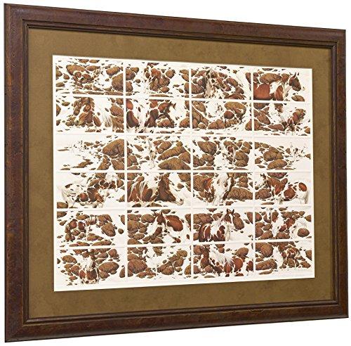 bev-doolittle-s-n-limited-edition-hide-and-seek-framed-art-print