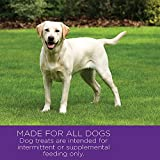 Wellness Petite Treats Small Breed Grain Free Lamb & Apples Natural Soft Dog Treats, 6-Ounce Bag