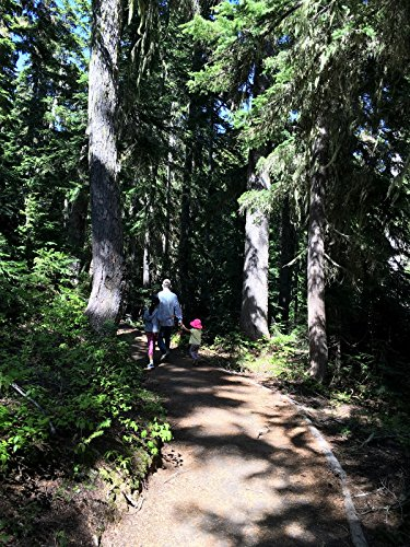 Hiking with Valentine - Rainy Lake Trail, North Cascades National Park