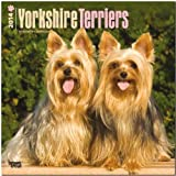 BrownTrout Yorkshire Terriers 2014 Wall