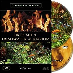 Fireplace & Freshwater Aquarium - Cheminée et Aquarium d'eau douce