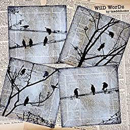 Black Bird Handmade Glass Coaster Set from Upcycled Dictionary page book art - WilD WorDz - Carriers of the Word