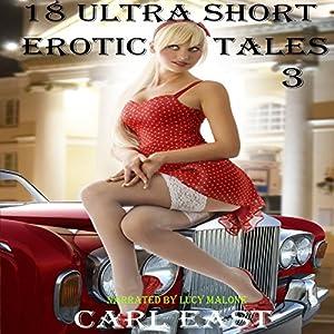 18 Ultra Short Erotic Tales 3 Hörbuch