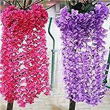 Rare Imported Attractive Hydrangea Flower Seeds , Sold By VasuWorld