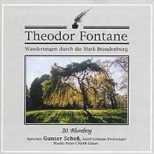 Blumberg (Wanderungen durch die Mark Brandenburg 20) Hörbuch von Theodor Fontane Gesprochen von: Gunter Schoß