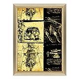 QUADRO SU TELA CANVAS INTELAIATO - CON CORNICE - Leonardo Da Vinci - Studio di Anatomia - Medicina Chirurgia - 70x100cm - Stile Design Legno Naturale - (cod.339)