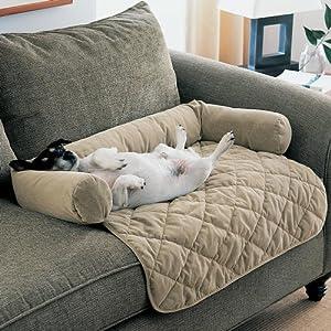 large dog couch lookup beforebuying