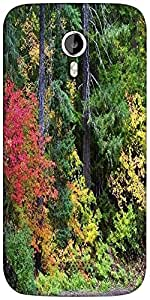 Snoogg autumn forest background Designer Protective Back Case Cover For Micromax A116