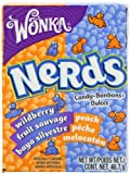 Wonka Nerds Peach and Wild Berry 46.7 g (Pack of 12)