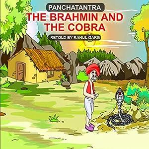 The Brahmin and the Cobra Hörbuch von Rahul Garg Gesprochen von: Rahul Garg