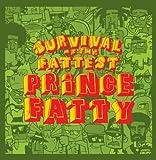 Meltdown - Prince Fatty