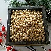 平成27年 佐賀県産 大豆 10kg 業務用 品種:フクユタカ