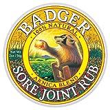 Badger - Sore Joint Rub - 2 Fl Oz