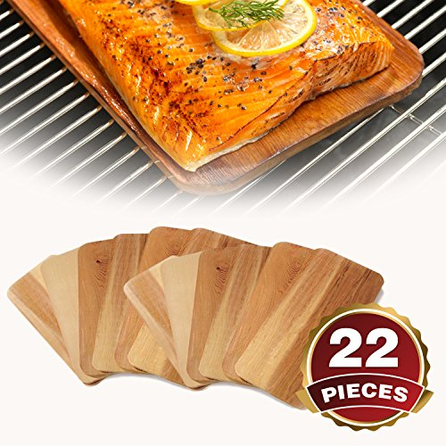 TrueFire Gourmet 22 Piece Set Cedar Grilling Plank (2nds) – Planks for Salmon, Fish, Steak, Veggies