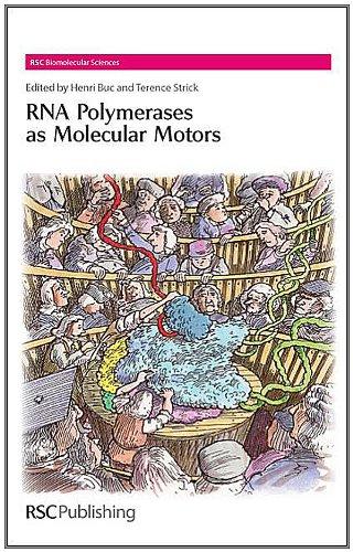 RNA Polymerases as Molecular Motors (RSC Biomolecular...