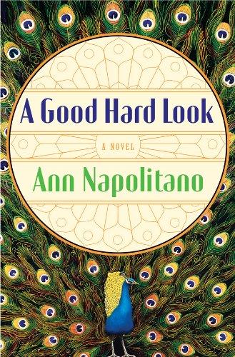 A Good Hard Look: A Novel