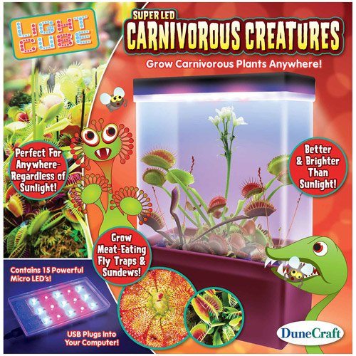 Led Light Cube Terrariums, Carnivorous Creatures, W/ Fly Trap & Sundew Seeds