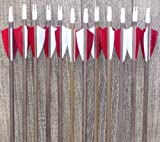 Poplar Wood Arrows red and white