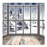 Kate 10x10ft Winter Indoor Photography Backdrops Snow Window Backgrounds Gray Wood Floor for Photography Props Video (Color: the same with picture, Tamaño: 10x10ft)