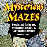 img - for Mysterious Mazes: Perplexing Pathways, Contorted Conduits, & Convoluted Corridors book / textbook / text book