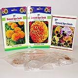 Marigold F1 Orange, Marigold F1 Yellow, Pansy F1 Mix And 6 Germination Kit (9 Qty)