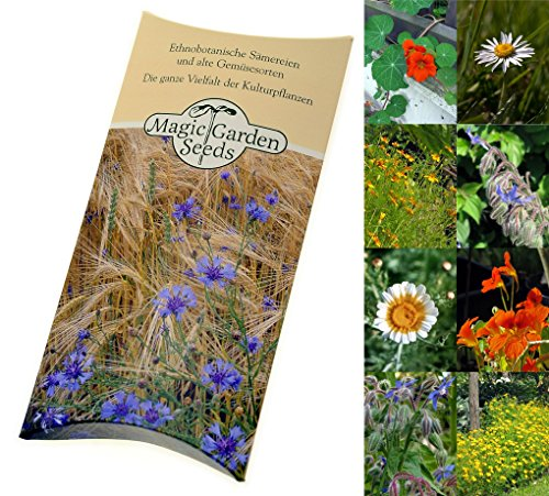 seed-kit-edible-flowers-4-aromatic-varieties-to-add-beauty-and-flavour-to-salads-finger-food-platter