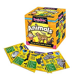 Brainbox A Box of Animals