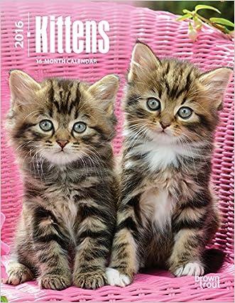 Kittens 2016 Engagement
