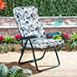 Recliner Chair with Classic Oxford Green Cushion (Green Frame)
