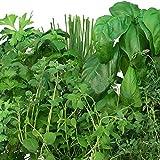 Miracle-Gro AeroGarden Tuscan Italian Herb Seed Pod Kit (7-Pods)