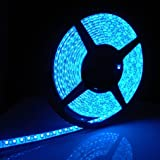 Blue 5M Waterproof 300 LED 3528 SMD Flexible LED Light Lamp Strip 12V