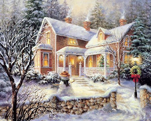 Blxecky 5D DIY Diamond Painting By Number Kits,Winter scenery(12X16inch/30X40CM)
