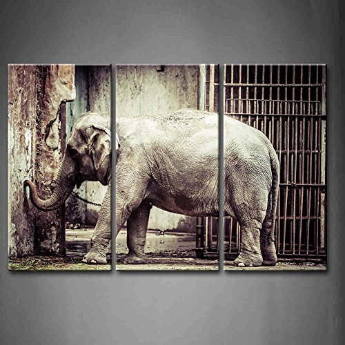 3 Panel Wall Art Black And White Elephant In The Zoo Iron Gate Painting The Picture Print On Canvas Animal Pictures For Home Decor Decoration Gift Piece (Stretched By Wooden Frame,Ready To Hang)