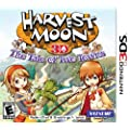 Harvest Moon: Tale Of Two Towns 3DS - Nintendo 3DS Standard Edition