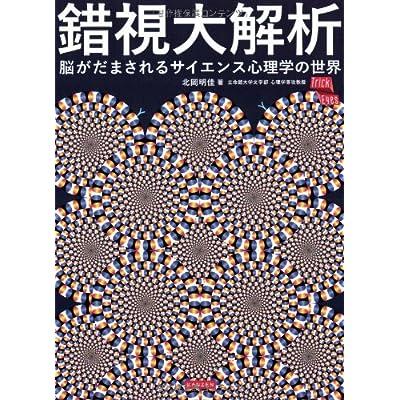 錯視大解析 脳がだまされるサイエンス心理学の世界