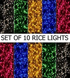 Hstore Rice Light 10 ft. multicolor (set of 10)