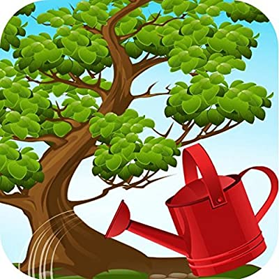 Bonsai Tree Care [Download]