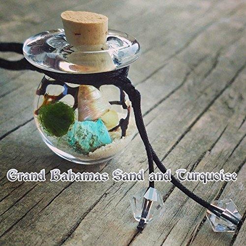 Marimo Moss Ball Necklace - Beach in a Bottle - Living Jewelry - Thick Glass Orb - Real Stone of your choice - Many REAL Destination Beach Sands to choose from and **NEW* you choose your Shell! (Ball Jar Pendant compare prices)