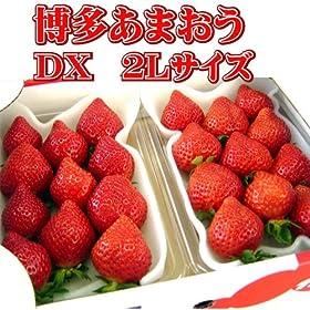【産地直送】博多あまおう DX 2L (約320g x 2パック)