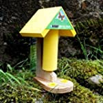 Butterfly Nectar feeder and food pack
